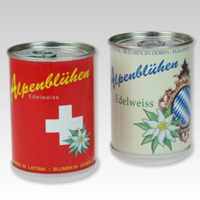 edelweis-schweiz-bayerngross